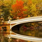 Bow Bridge Beauty by Jessica Jenney