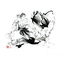 Aikido randori techniques kimono martial arts sumi-e samurai ink painting artwork Photographic Print