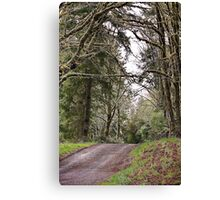 Back Roads of Siletz, Oregon Canvas Print