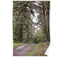 Back Roads of Siletz, Oregon Poster