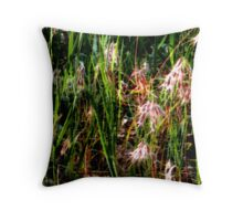 O'Leary's Field Throw Pillow