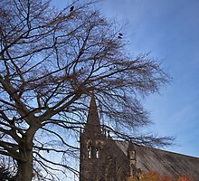 Church, trees and resting birds by jasminewang