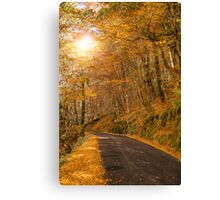Autumn, Geres, Portugal Canvas Print
