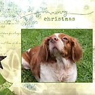 Christmas Card 21 by Australian Brittanys