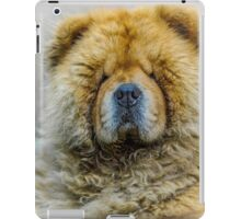 Chow portrait iPad Case/Skin