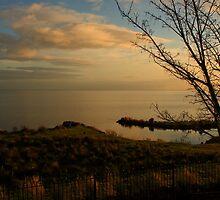 The Loughshore, Ardboe by Adrian McGlynn