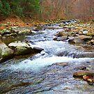 Tye River by Ginny York