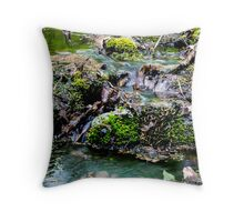 Flowing Water - Candia, NH 05-08-13 Throw Pillow
