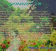 Shakespeare Sonnet 18--Shall I compare thee... by KayeDreamsART