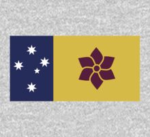 Australia Flag Proposal 8 by cadellin