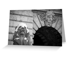Lion With Snow Cap Greeting Card