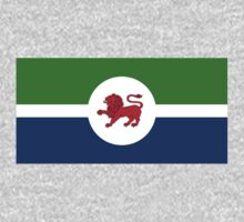Tasmanian Flag Proposal 2 by cadellin