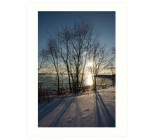 Long Shadows in the Snow Art Print
