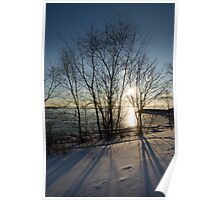 Long Shadows in the Snow Poster