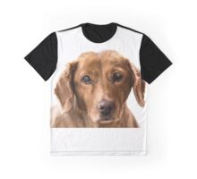 puppy eyes Graphic T-Shirt