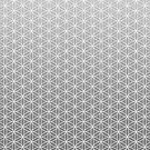 Flower of Life - Silver by Steven Nicolaides