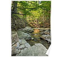 Small mountain stream in the forest Poster