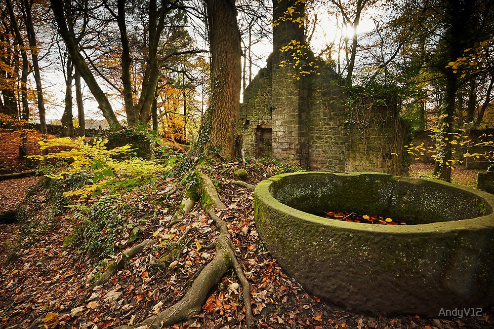 Lumsdale Mill and its Happy Demise by Andy Freer