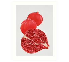Pomegranate Painting Art Print