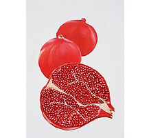 Pomegranate Painting Photographic Print
