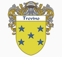Trevino Coat of Arms/Family Crest by William Martin