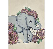Little Elephant in soft vintage pastels Photographic Print