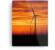 Prairie Sprouts Metal Print