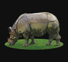 Indian Rhino by Kawka