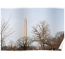 Washington Monument Behind Trees Poster
