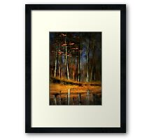 The Last Leaves of Autumn Framed Print