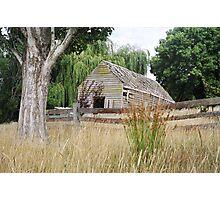 Rustic stable, Hagley, Tasmania Photographic Print