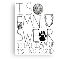 I Solemnly Swear... Canvas Print