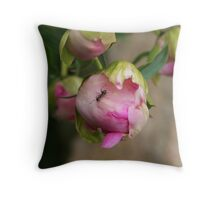 Ants on Peonie buds Throw Pillow