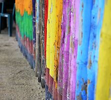 Wall of Color by Steve St.Amand