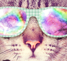 Hipster Cat With Glasses (Trippy Eye) Sticker