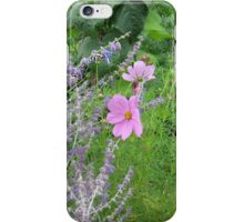 Cosmos and Lavender in a Meadow iPhone Case/Skin