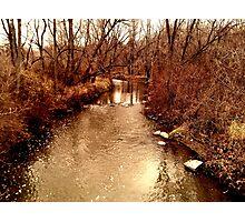 Creek Bank Photographic Print