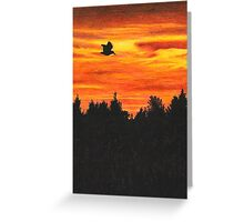 Sunset with bird Greeting Card