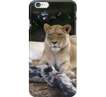 Female Lion iPhone Case/Skin