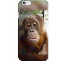 The Hair of my Chinny Chin Chin iPhone Case/Skin