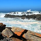 Tsitsikamma National Park by JenniferEllen
