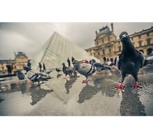 At The Louvre with my Friend Photographic Print