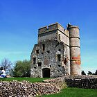Picnic at Donnington Castle by Samantha Higgs