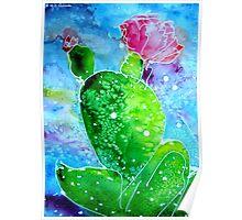 Colorful Cactus, southwest art Poster