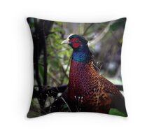 Pheasant. Throw Pillow