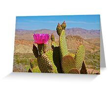 Beaver-Tail in Bloom Greeting Card