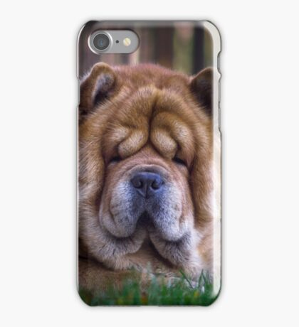 Chow dog portrait iPhone Case/Skin