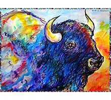 Buffalo, Dying Breed Photographic Print