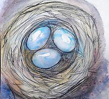 Nest Eggs by M C  Sturman
