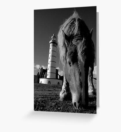 St Mathieu - le Phare et le cheval Greeting Card